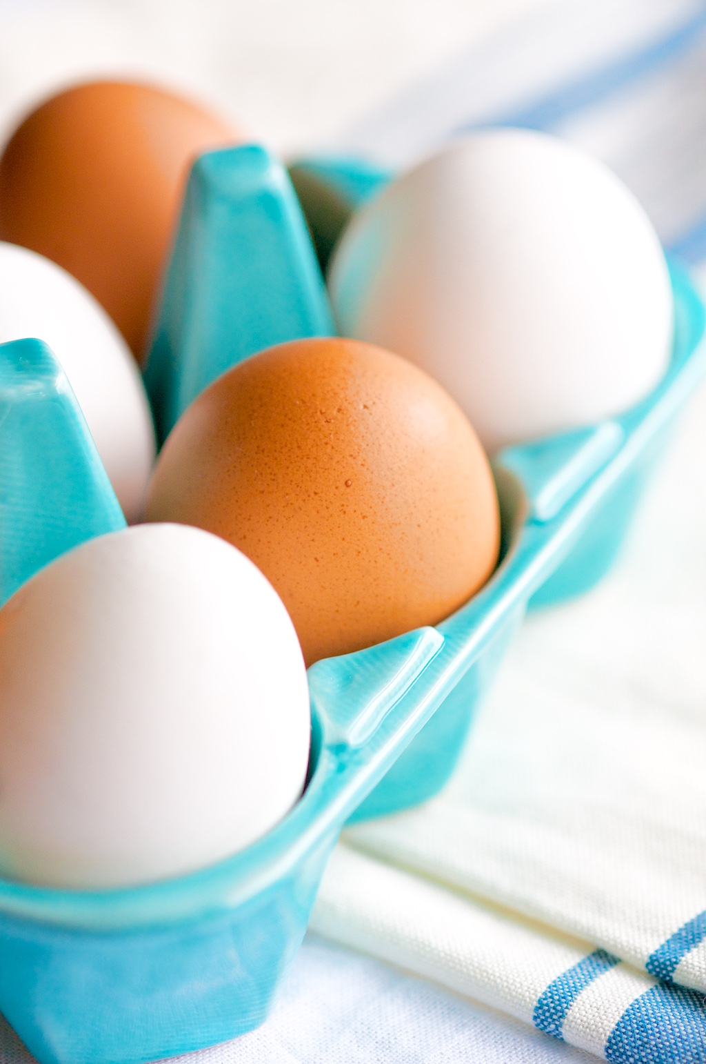 Blue Carton Fresh Eggs