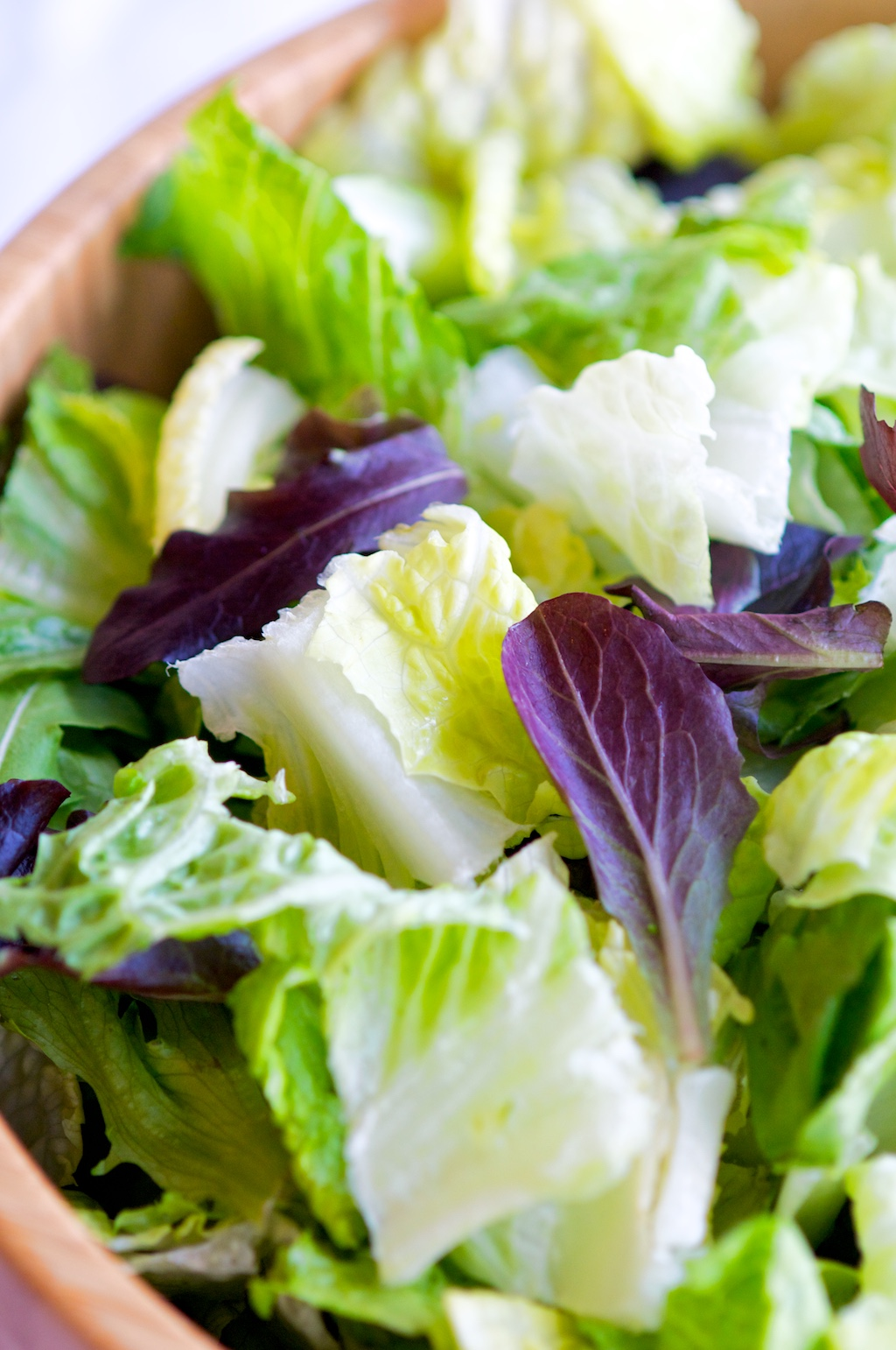 Romaine and Baby Spring Mix