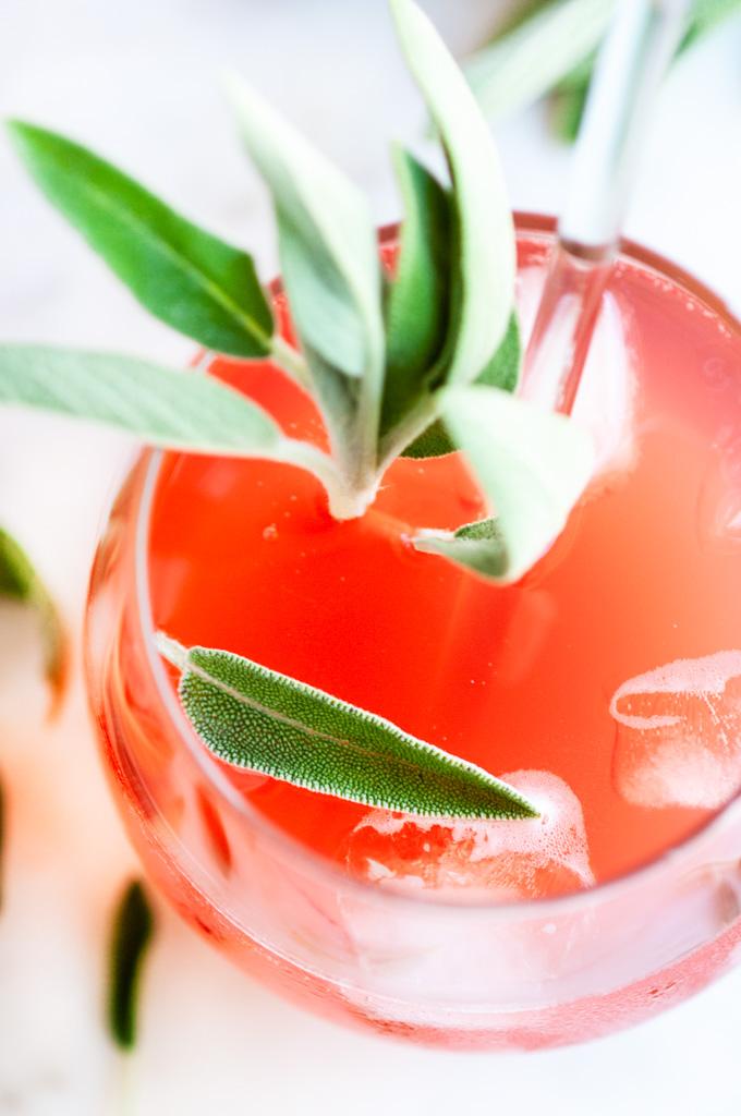 Sage Ginger Blood Orange Fizz Cocktail stemless glass with stirrer and fresh sage