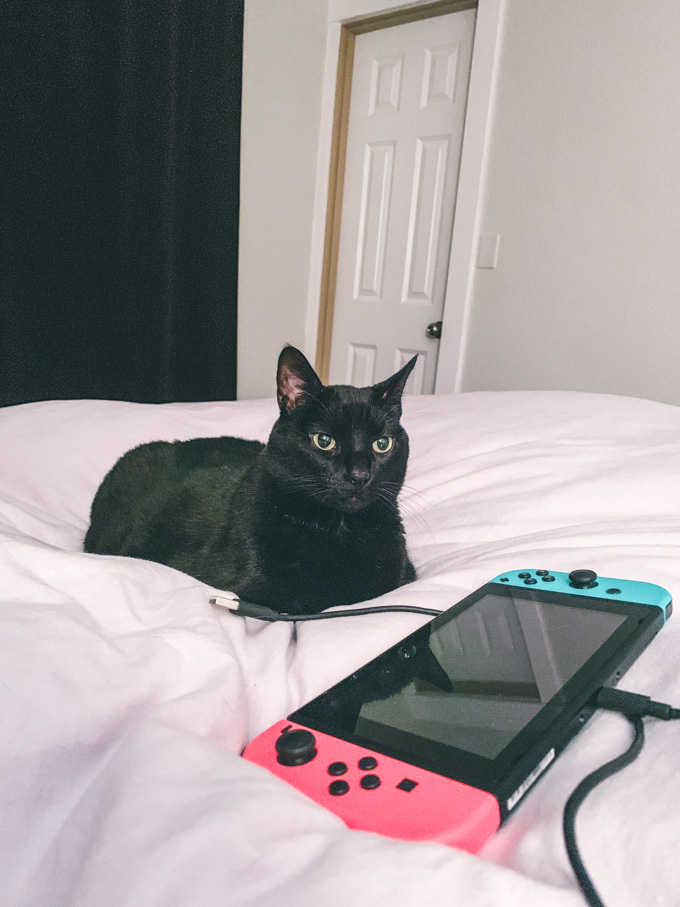 Black cat with Nintendo Switch on grey linen