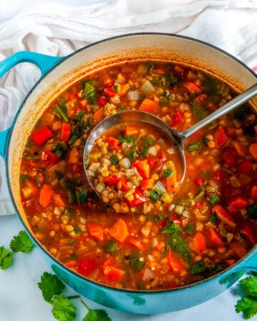 One Pot Vegetable Lentil Stew in blue le creuset pot with metal ladle, tea towel and cilatnro